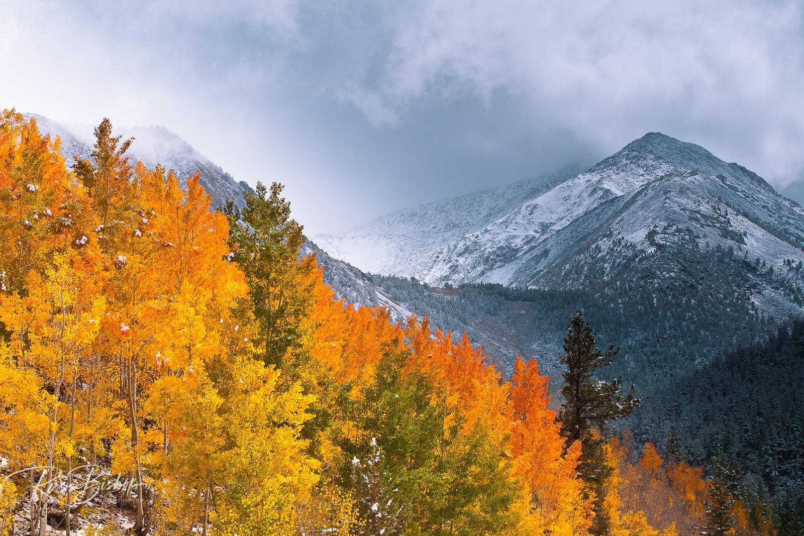 Fall color and early snow at North Lake, Inyo National Forest, Sierra Nevada Mountains, California